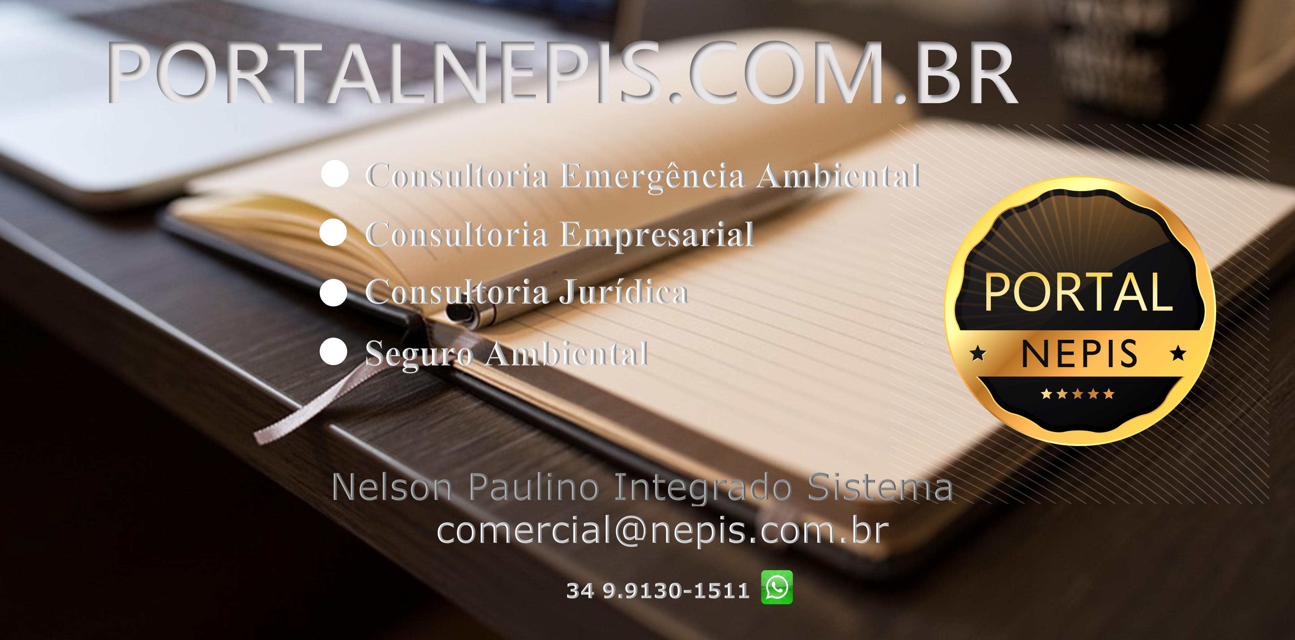 Bem-vindo ao Portal Nepis Soluções Empresariais